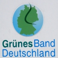 Günes Band